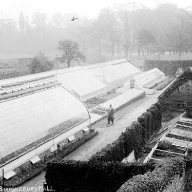 Birdingbury Hall.  Greenhouse