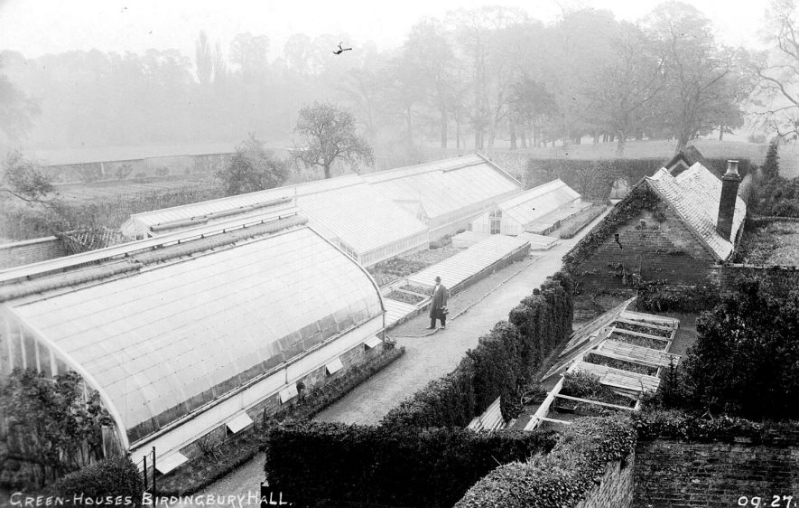 Birdingbury Hall.  Kitchen garden with extensive greenhouses. It has been suggested that some of these were built by Messenger & Co. of Loughborough, Leics. In 1904 several new forcing houses and peach house were built for Mrs M A McKenzie.  1900s |  IMAGE LOCATION: (Warwickshire County Record Office)