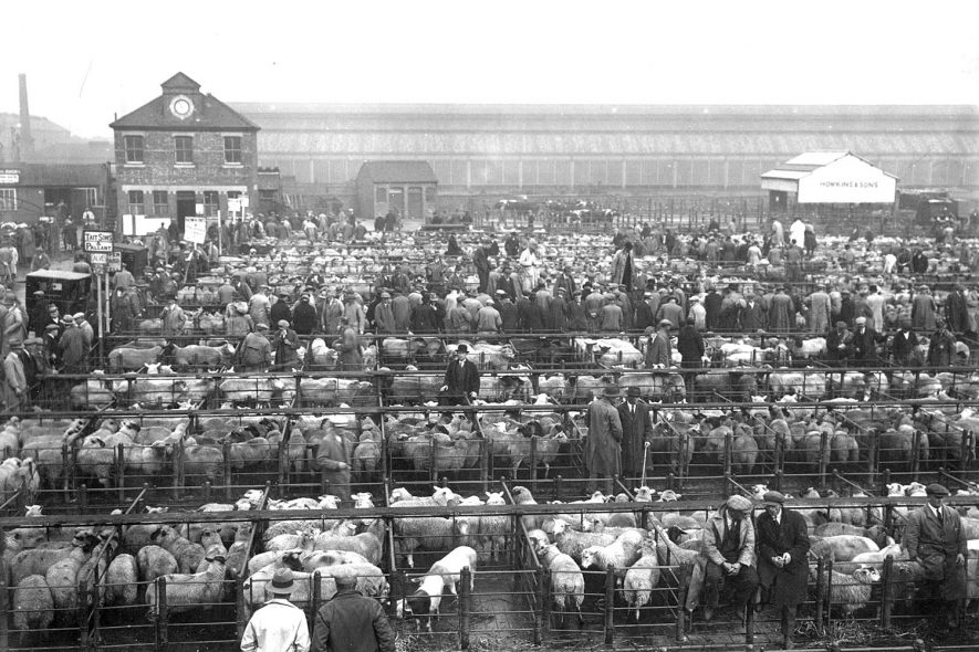 The cattle market in the 1930s.Photograph supplied by kind permission of the Rugby Advertiser. |  IMAGE LOCATION: (Rugby Library)