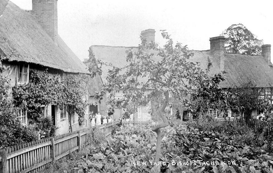 Thatched cottages known as New Yard and surrounding gardens in Bishops Tachbrook.  1900s |  IMAGE LOCATION: (Warwickshire County Record Office)