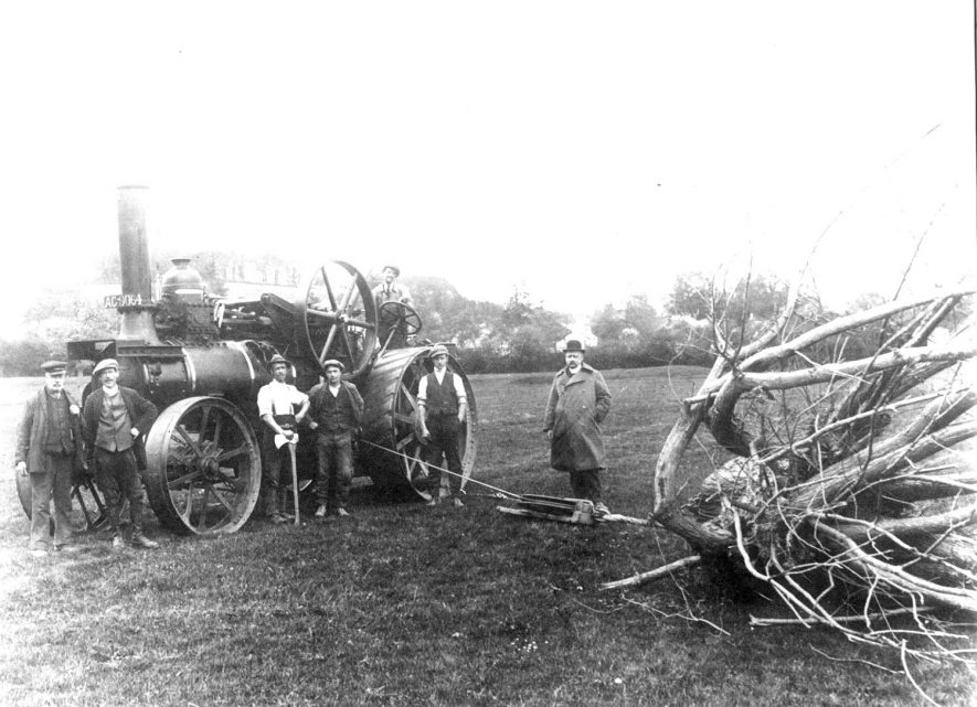 A steam driven engine winching a felled tree, Salford Priors.  1900s |  IMAGE LOCATION: (Warwickshire County Record Office)
