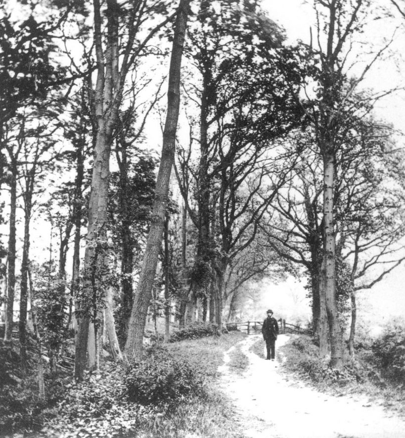 Castle Grove, Kenilworth.  1860s |  IMAGE LOCATION: (Warwickshire County Record Office)
