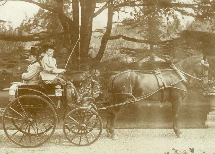 Pony and trap in the grounds of Guy's Cliffe, Warwick.  1900s |  IMAGE LOCATION: (Warwickshire County Record Office)