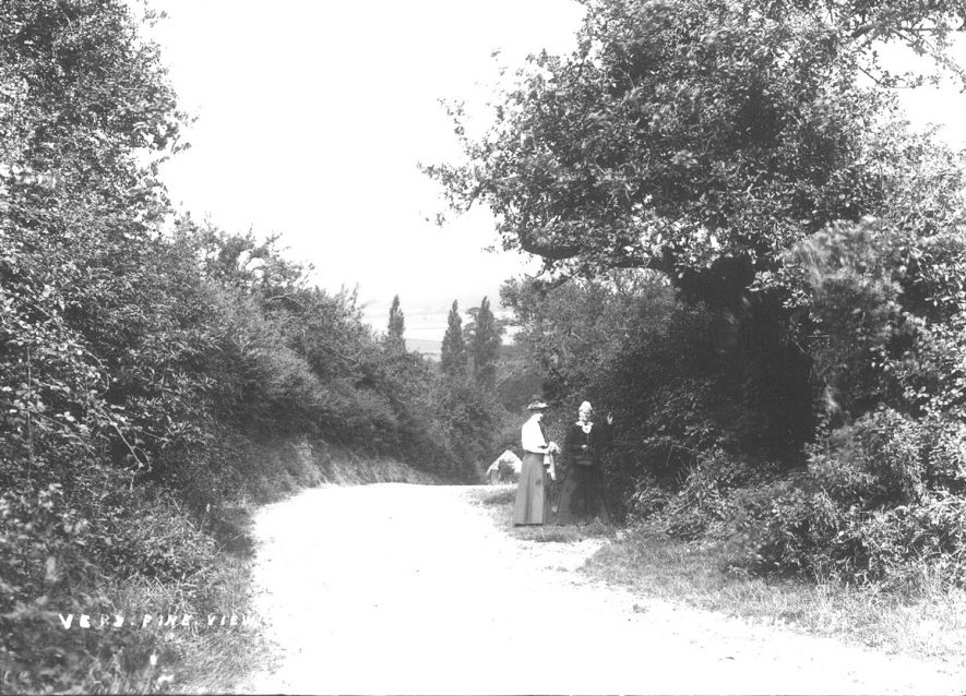 A footpath in Ardens Grafton.  1900s |  IMAGE LOCATION: (Warwickshire County Record Office)