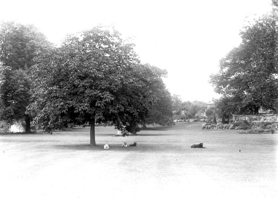 Park lands of Avonside House, Bidford on Avon.  1930  |  IMAGE LOCATION: (Warwickshire County Record Office)