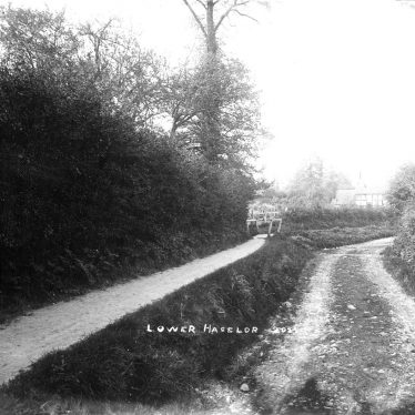 Haselor, Lower.  Country lane