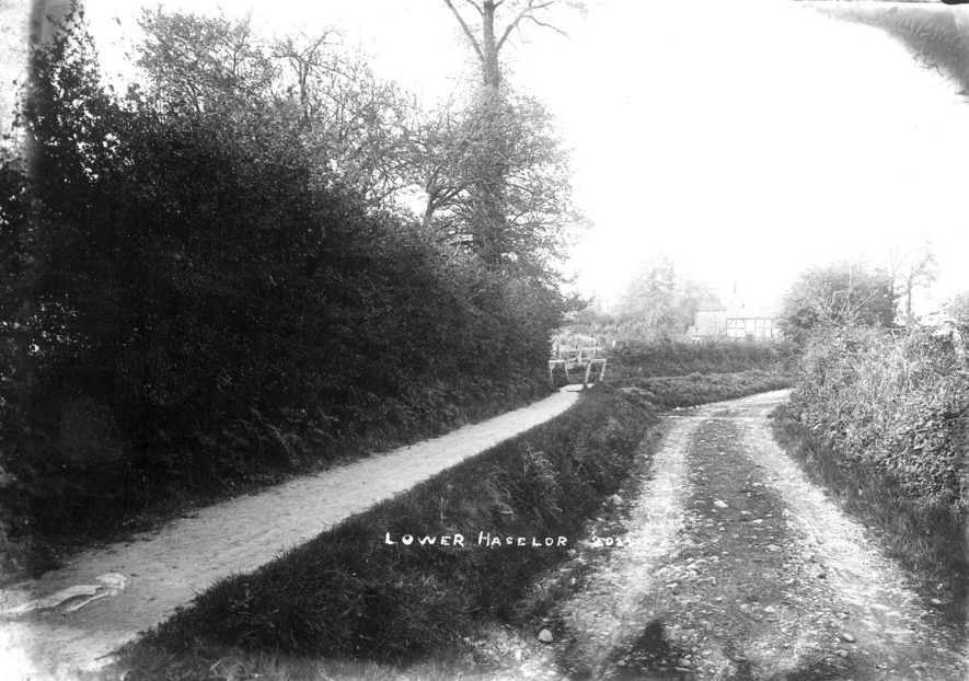 A country lane leading into Lower Haselor.  1900s |  IMAGE LOCATION: (Warwickshire County Record Office)