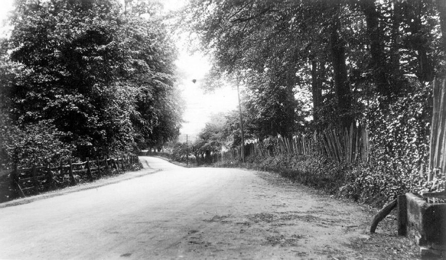 The Spring at Ragley, near Alcester.  1920s |  IMAGE LOCATION: (Warwickshire County Record Office)