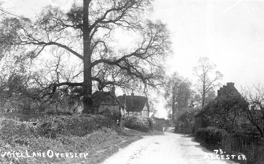 Thatched, timber framed house in Mill Lane, Oversley, Alcester.  1900s |  IMAGE LOCATION: (Warwickshire County Record Office)