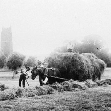 Brailes, Lower.  Haymaking