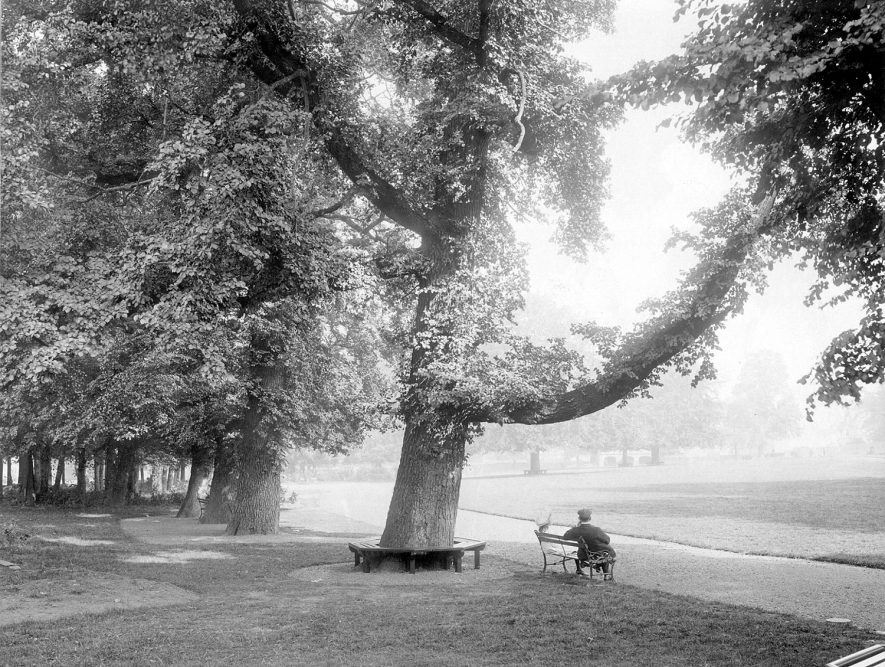 Caldecott Park,1900s |  IMAGE LOCATION: (Rugby Library)