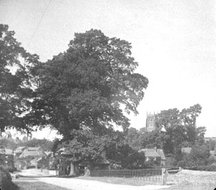 View of part of Lower Brailes, showing street and church.  1900s |  IMAGE LOCATION: (Warwickshire Museums. Photographic Collections.)