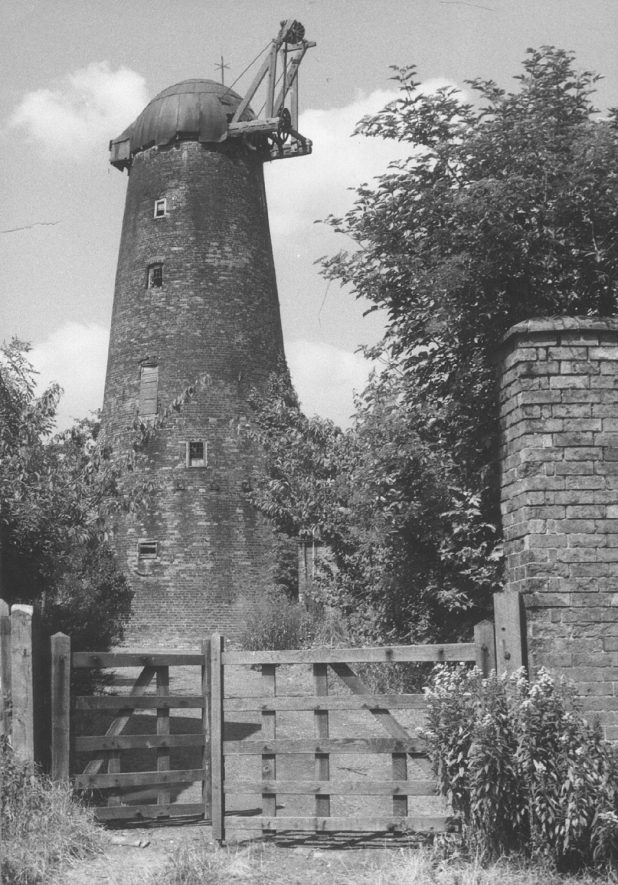 Thurlaston windmill. 1955 |  IMAGE LOCATION: (Rugby Library)