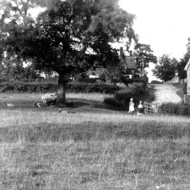 Preston on Stour.  Village view