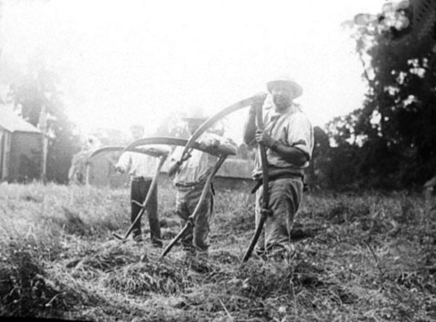 Three farm workers with scythes in hayfield in Lower Brailes.  1900s |  IMAGE LOCATION: (Warwickshire Museums. Photographic Collections.)