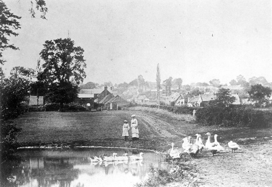 View of Napton on the Hill, with a pond, geese and ducks in the foreground.  A lady and girl are standing by the pond.  1900s |  IMAGE LOCATION: (Warwickshire Museums. Photographic Collections.)