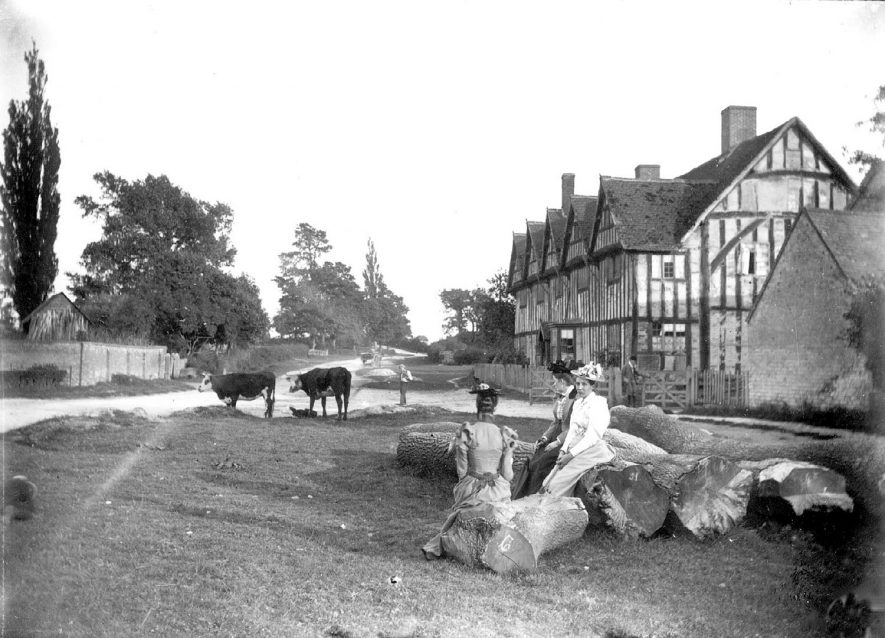 Three ladies are sitting on felled tree trunks in front of a large timber framed house and cows are standing in the background, Long Itchington.  1900s |  IMAGE LOCATION: (Warwickshire Museums. Photographic Collections.)