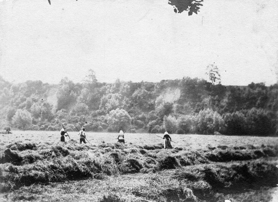 Three women and one man turning the hay in Marriage Meadows, Bidford on Avon.  1900s |  IMAGE LOCATION: (Warwickshire County Record Office)