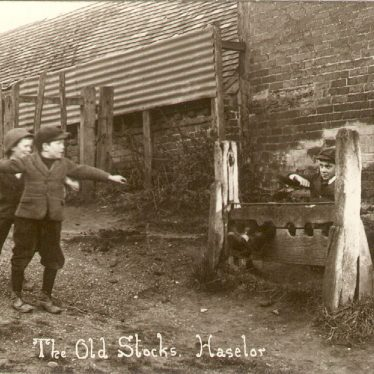 Haselor.  Old stocks