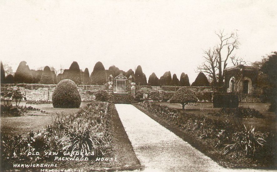 Yew gardens at Packwood House. 1900s    IMAGE LOCATION: (Warwickshire County Record Office)