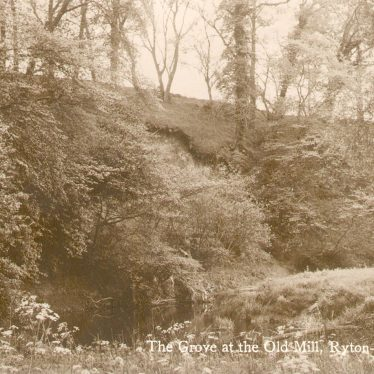 Ryton on Dunsmore.  Grove at the Old Mill