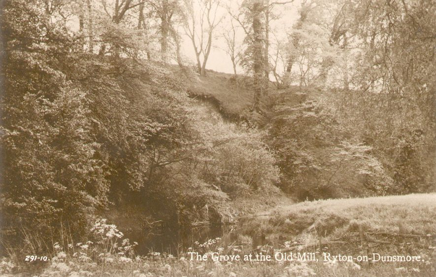 The grove by the Old Mill, Ryton on Dunsmore.  1920s |  IMAGE LOCATION: (Warwickshire County Record Office)