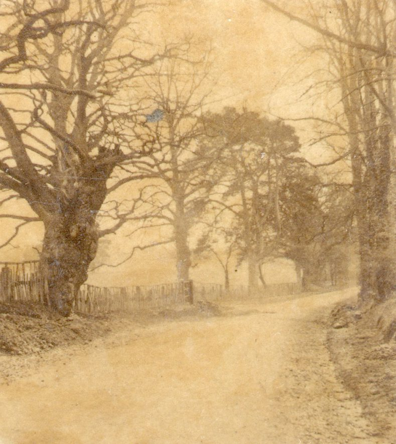 View of Stoneleigh Park.  1856 |  IMAGE LOCATION: (Warwickshire County Record Office)