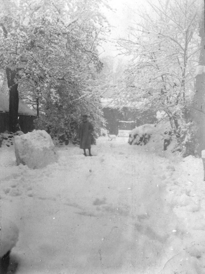 Snow in the garden of 10, Jury Street, Warwick.  1900s |  IMAGE LOCATION: (Warwickshire County Record Office)