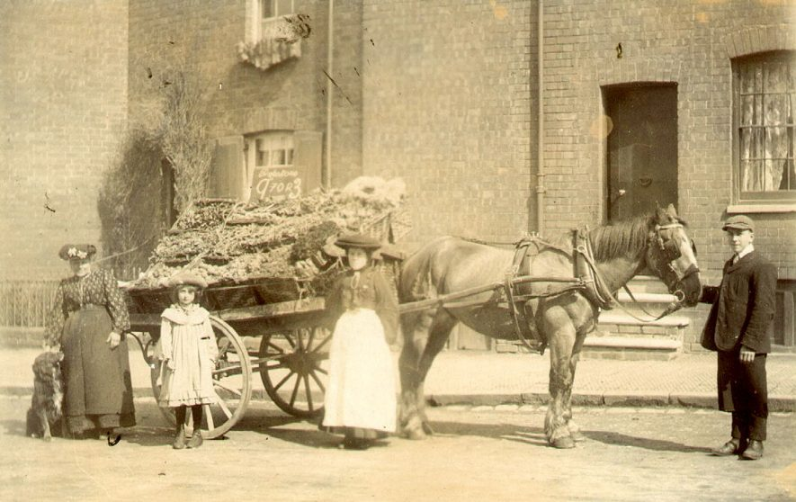 A fruit and vegetable salesman with his cart, Warwick.  1900s |  IMAGE LOCATION: (Warwickshire County Record Office)