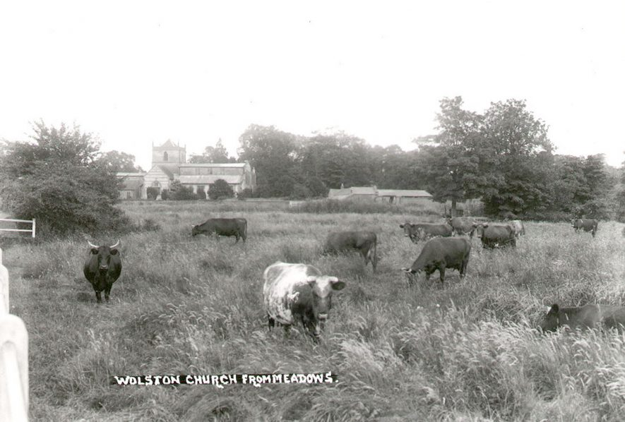 St Margaret's Church from the meadows, Wolston.  1930s |  IMAGE LOCATION: (Warwickshire County Record Office)