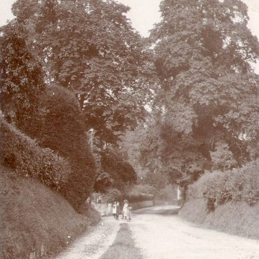 Great Alne.  A country lane