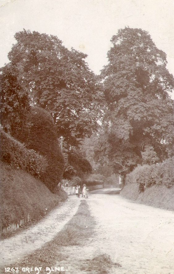 A country lane in Great Alne.  1900s |  IMAGE LOCATION: (Warwickshire County Record Office)