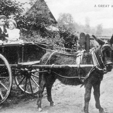 Great Alne.  Donkey and cart with children
