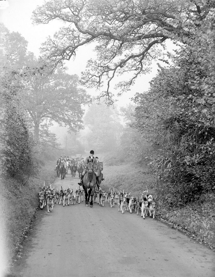 North Warwickshire hunt meet at Hampton on the Hill.  November 6th 1945 |  IMAGE LOCATION: (Warwickshire County Record Office)