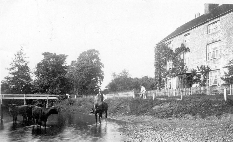 Rounding up the cattle, on horseback, at Coughton.  1900s |  IMAGE LOCATION: (Warwickshire County Record Office)