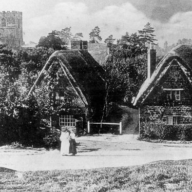 Ilmington.  Clifford's Orchard