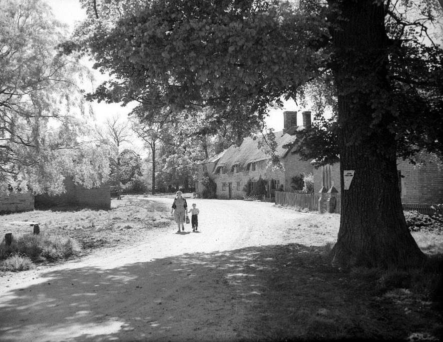 Thatched cottages in Idlicote, including a John Profumo poster on the tree.  May 25th 1955 |  IMAGE LOCATION: (Warwickshire County Record Office)