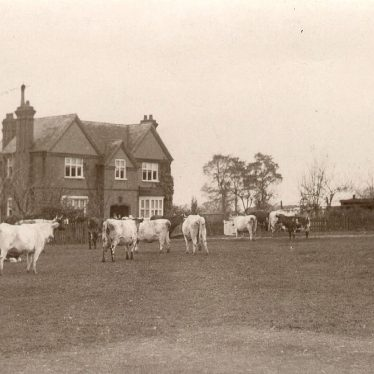 Kenilworth.  Castle Farm
