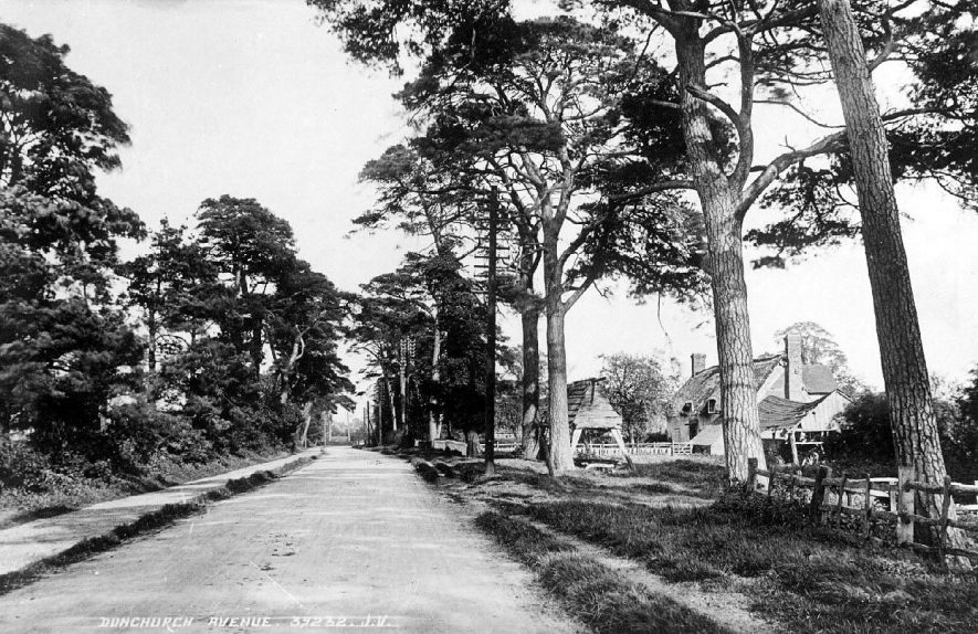 Tree lined avenue in Dunchurch with thatched cottage and unidentified wooden structure in front.  1900s |  IMAGE LOCATION: (Warwickshire County Record Office)
