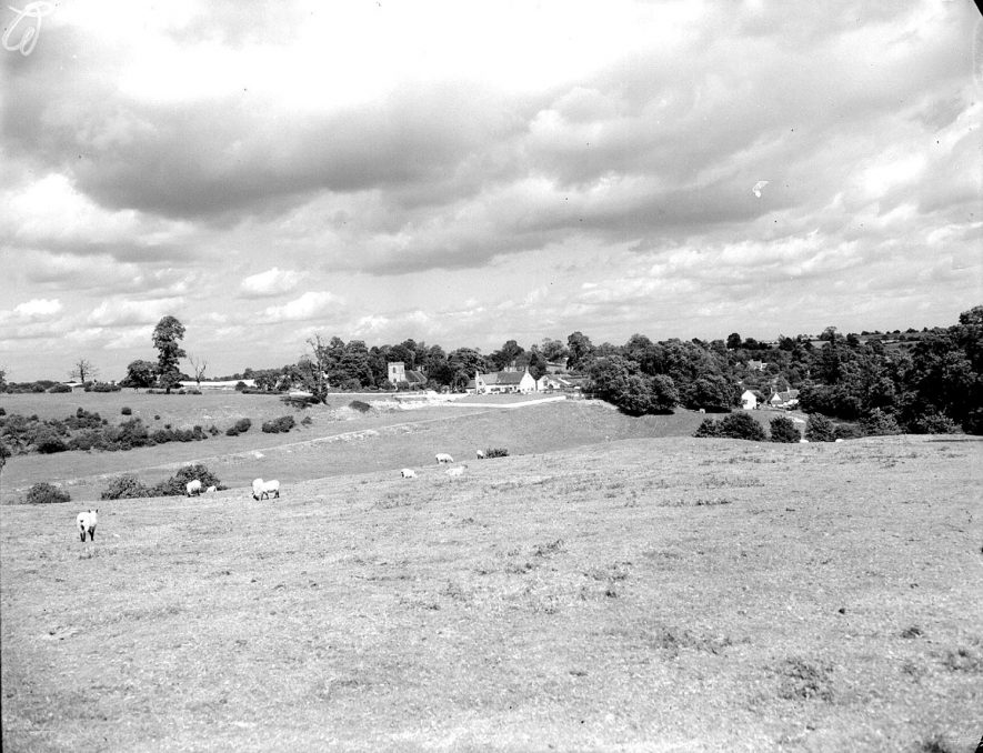 Lighthorne village and church as seen across the fields.  August 14th 1956 |  IMAGE LOCATION: (Warwickshire County Record Office)