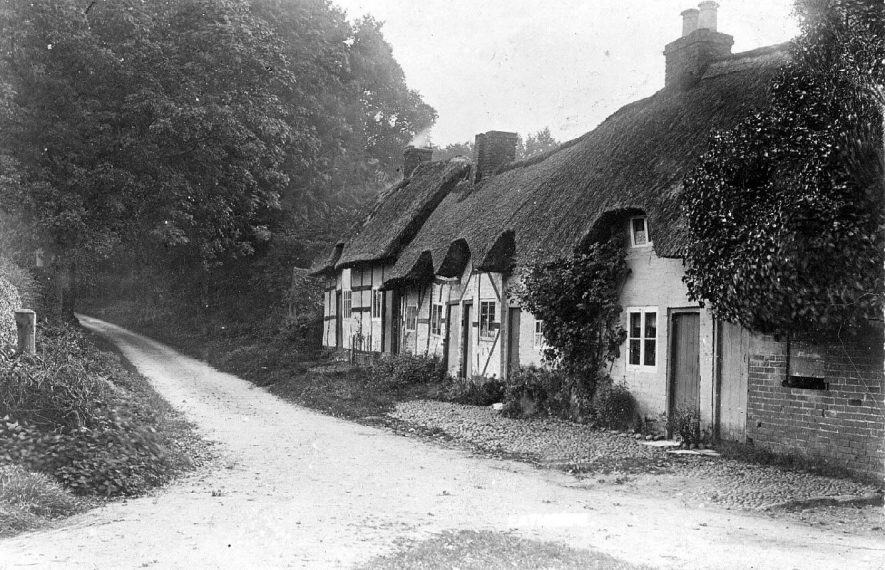 Row of thatched cottages in Eathorpe.  1900s |  IMAGE LOCATION: (Warwickshire County Record Office)