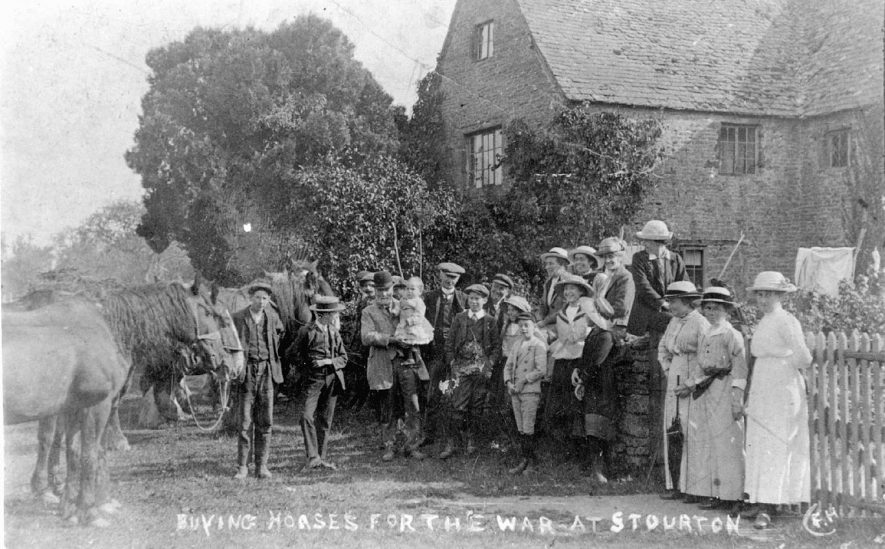 Group of people buying horses for the war at Stourton. 1910s [Local people and horses at Stourton, during requisitioning of horses for the Army in probably August or September 1914, judging by the foliage.] |  IMAGE LOCATION: (Warwickshire County Record Office)