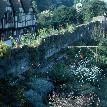 Warwick.  Mill Street Garden