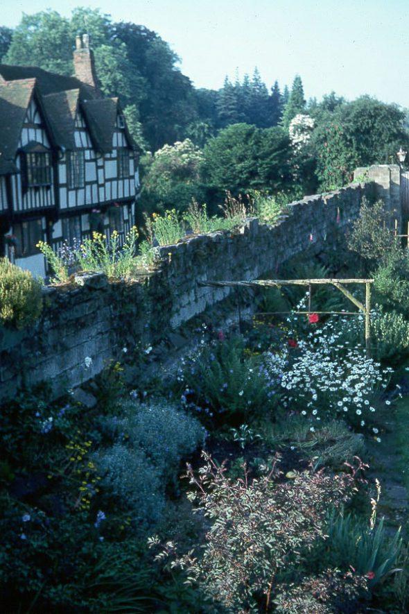 Garden of Christopher Jarvis (Warwick Castle gardener) at the rear of Mill Street, Warwick.  1979