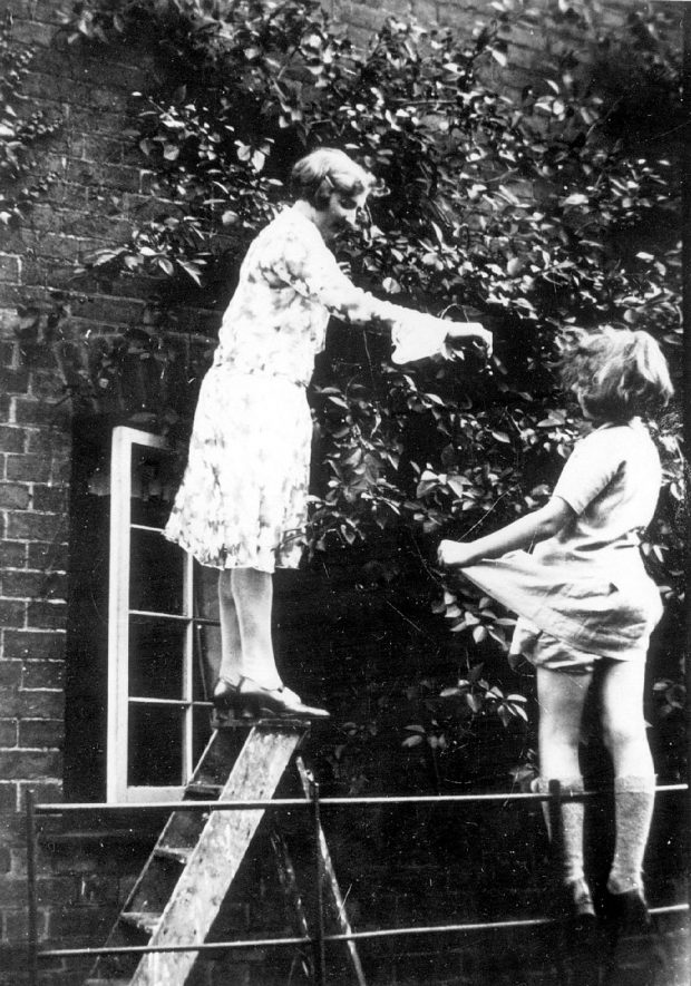 Old Kennels Farm on the Hampton Road, Warwick, inhabited by the Potter family.  Two girls (possibly Jen & Peg Potter) picking cherries.  1930s |  IMAGE LOCATION: (Warwickshire County Record Office) PEOPLE IN PHOTO: Potter, Peg, Potter, Jen, Potter, as a surname