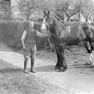 Oldberrow.  Man and horse at Oldberrow Court.