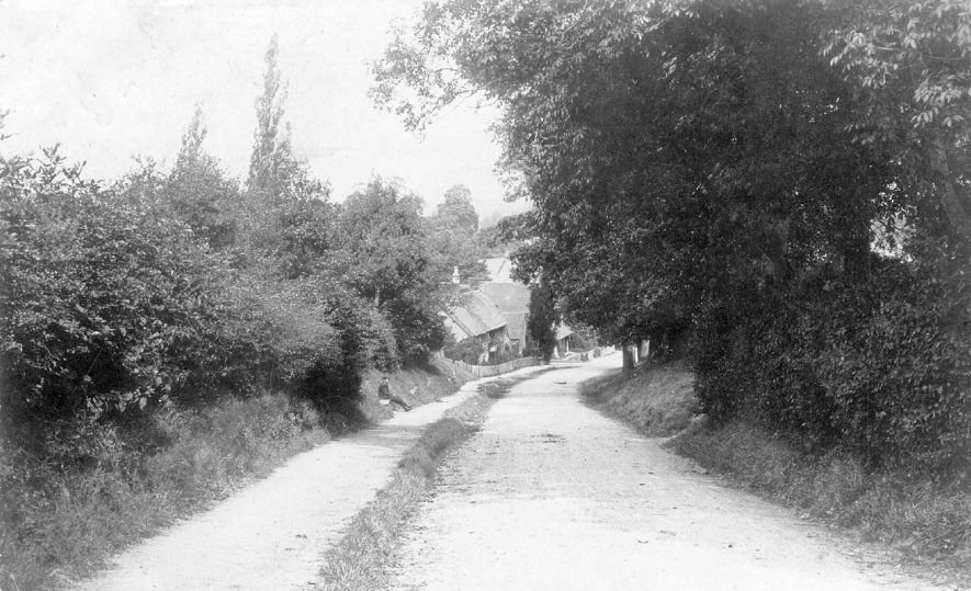 A lane in Offchurch.  1900s |  IMAGE LOCATION: (Warwickshire County Record Office)