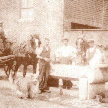 Shipston on Stour.  Horsefair horse trough