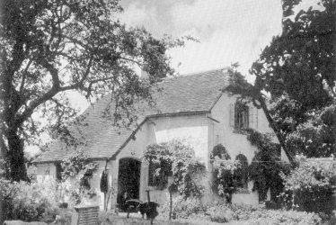 Cliffe Cottage Memories, Stratford