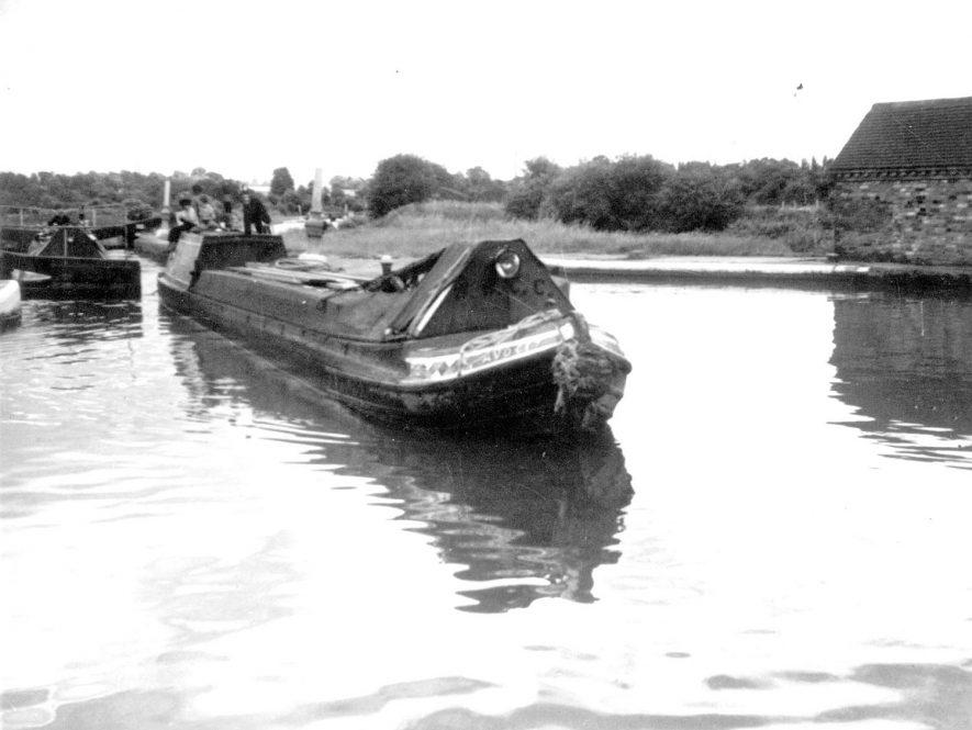 A monkey boat